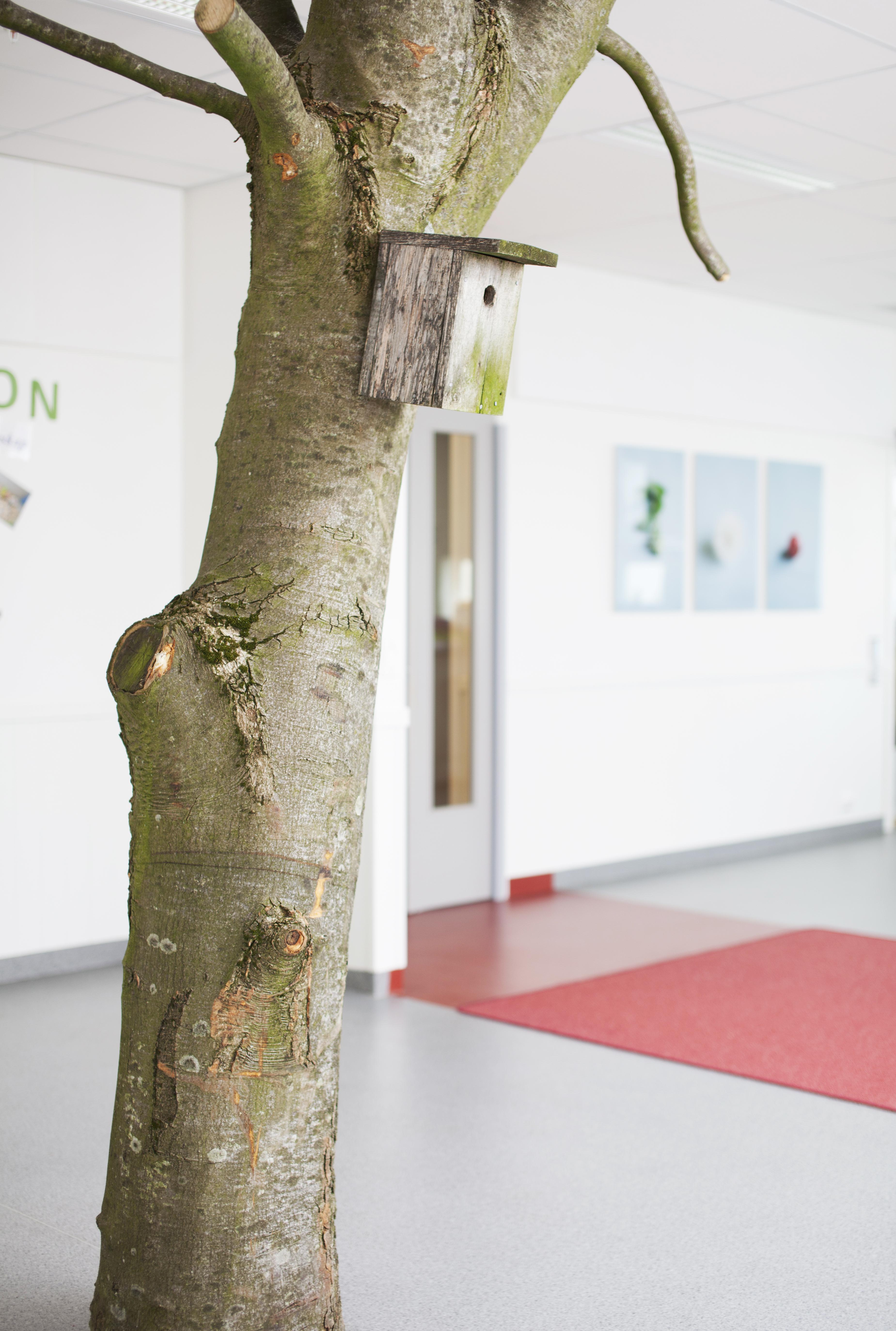 estetiske opplevelser i barnehagen
